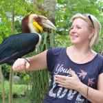 Экскурсия в парк птиц и рептилий на Бали
