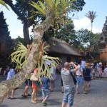 Экскурсия по ремесленным центрам Бали